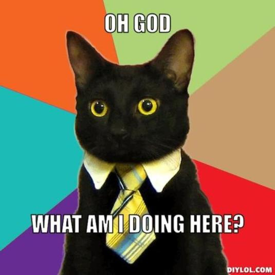 resized_business-cat-meme-generator-oh-god-what-am-i-doing-here-0ddc9a
